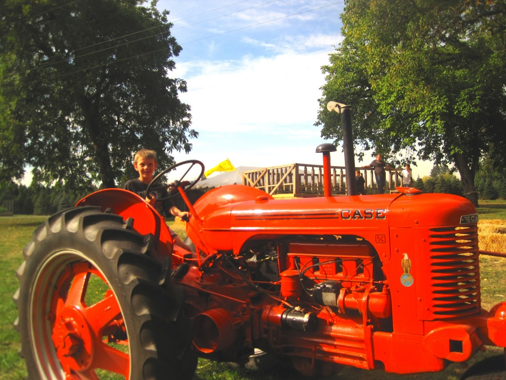 A vintage tractor attracts 7-year-old James Hoopman, a Pleasant Hill boy visiting the farm on a warm fall day. Photo by Vanessa Salvia.