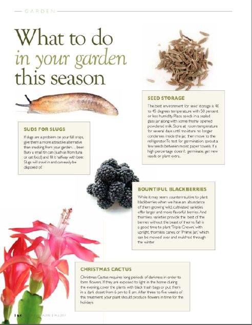 Seasonal Gardening - Fall 2011.pdf
