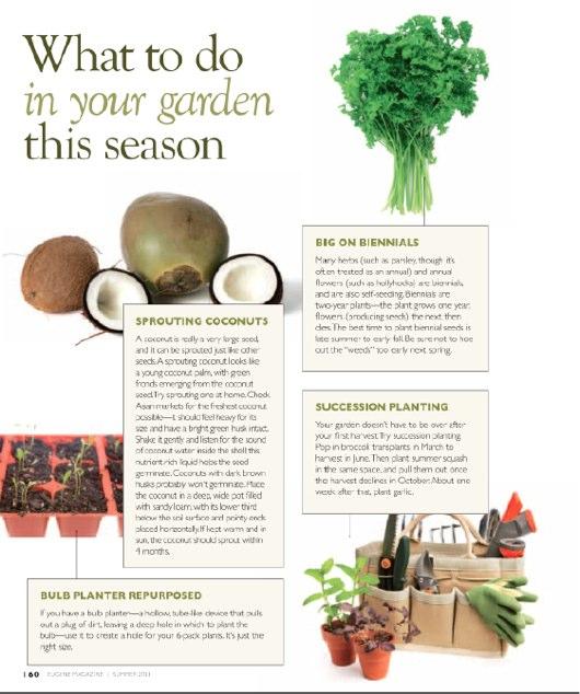 Seasonal Gardening Summer 2011.pdf