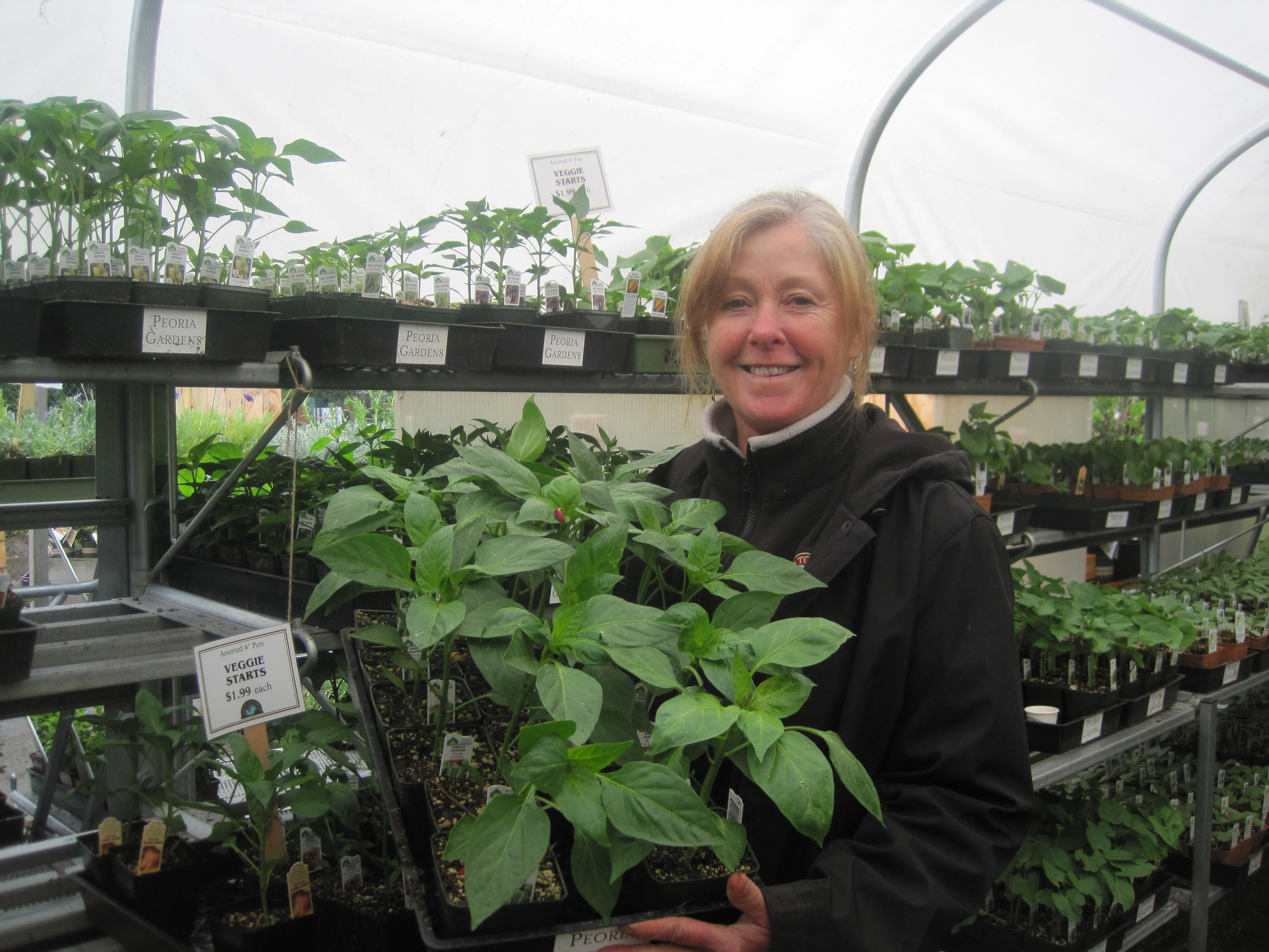 Carol Tuffo, the plant buyer for Down to Earth in Eugene, offered about 40 pepper varieties this season. Photo by Vanessa Salvia.