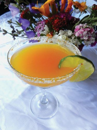 Humm Kombucha Mangorita Cocktail